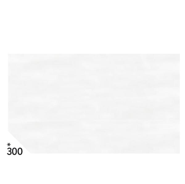Carta velina - 50 x 70 cm - busta 26 pezzi - 21gr - bianco 300 - Sadoch Foto prodotto